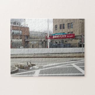 Familia del ganso de Jersey City Puzzles Con Fotos