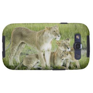 Familia del león en Kenia, África Samsung Galaxy SIII Funda