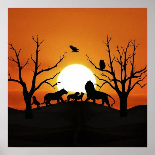 Familia del león en la puesta del sol póster