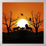 Familia del león en la puesta del sol posters