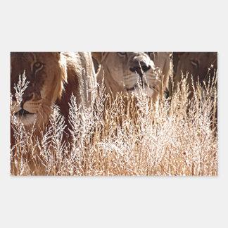 Familia del león pegatina rectangular