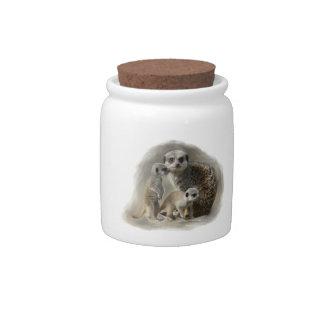 familia del meerkat jarras para caramelos