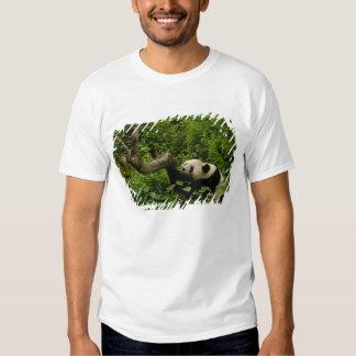 Familia del melanoleuca del Ailuropoda de la panda Camisas