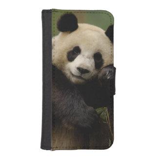 Familia del melanoleuca del Ailuropoda de la panda Billetera Para Teléfono