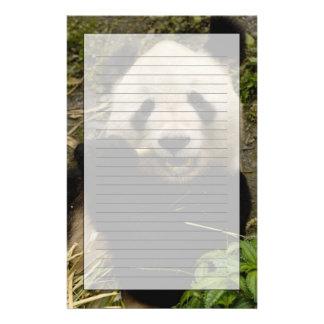 Familia del melanoleuca del Ailuropoda de la panda Papeleria De Diseño