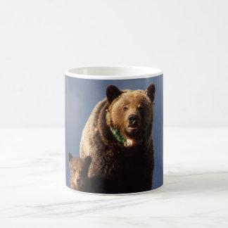 Familia del oso grizzly taza