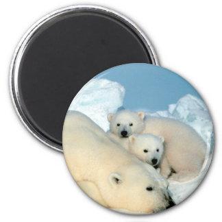 Familia del oso polar imán redondo 5 cm