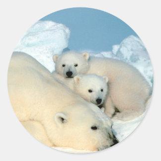 Familia del oso polar pegatina redonda