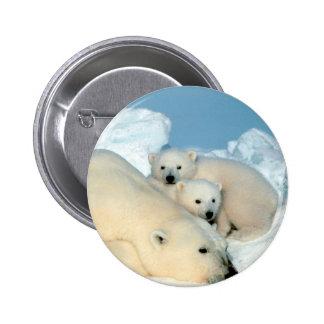 Familia del oso polar pin redondo de 2 pulgadas