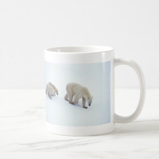 Familia del oso polar taza básica blanca