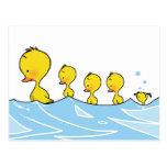 Familia del pato de la natación tarjeta postal