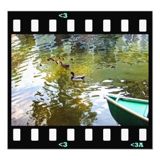 familia del pato de los pájaros foto