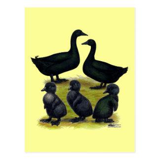 Familia del pato del Cayuga Tarjeta Postal