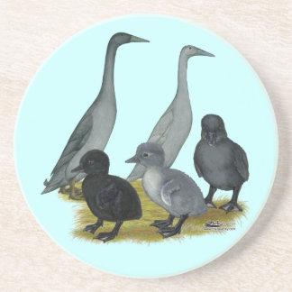 Familia del pato del corredor azul posavasos para bebidas
