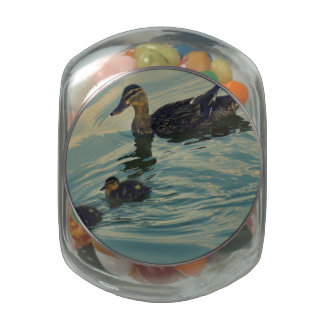 Familia del pato jarras de cristal