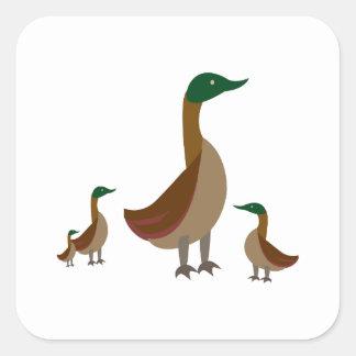 Familia del pato silvestre pegatinas cuadradases personalizadas