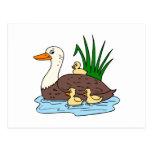Familia del pato tarjeta postal