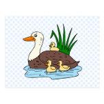Familia del pato tarjetas postales