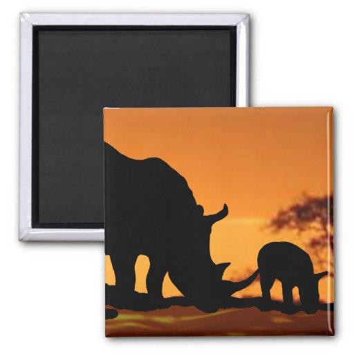 familia del rinoceronte imán cuadrado