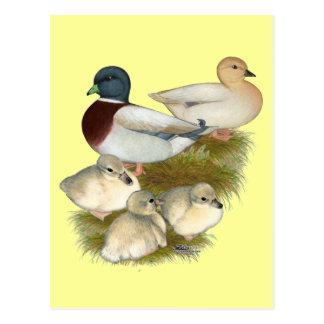 Familia en colores pastel del pato de la llamada tarjetas postales