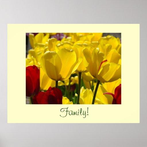 ¡Familia! flores rojas del tulipán del amarillo de Posters