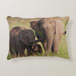 Familia india del elefante asiático en la sabana