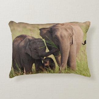 Familia india del elefante asiático en la sabana cojín decorativo