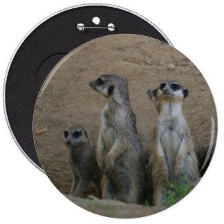 Familia linda de Meerkat que dice hola Pin Redondo 15 Cm