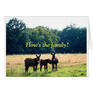 Familia linda del burro tarjeta de felicitación