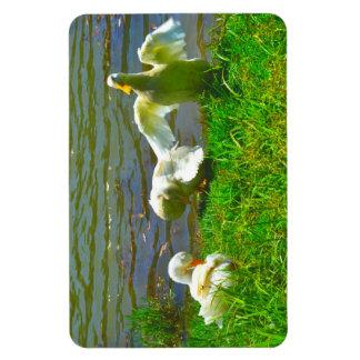 Familia linda del pato iman de vinilo