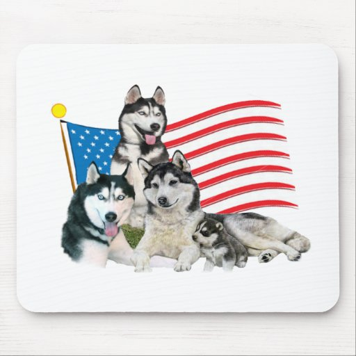 Familia patriótica del husky siberiano tapete de raton