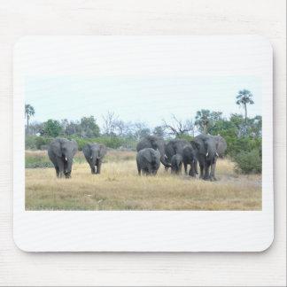 Familia Tom Wurl.jpg del elefante Alfombrilla De Raton