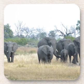 Familia Tom Wurl.jpg del elefante Posavasos De Bebida