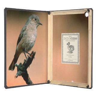 Familiar Chat (Cercomela Familiaris) On Twig Case For iPad Air