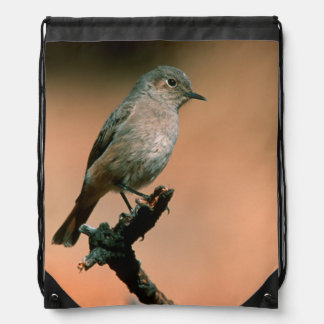 Familiar Chat (Cercomela Familiaris) On Twig Drawstring Backpack