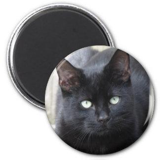 Familiar del gato negro imán redondo 5 cm