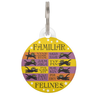 Familiar Felines in Yellow, Orange, and Purple Pet Name Tags
