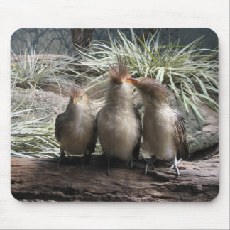 Family Bird Time Mouse Pad