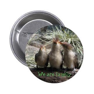 Family Bird Time Pinback Button