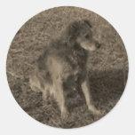 Family Dog Classic Round Sticker