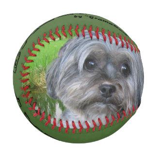 Family Dog on a Baseball
