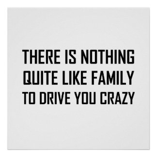 Family Drive You Crazy Poster