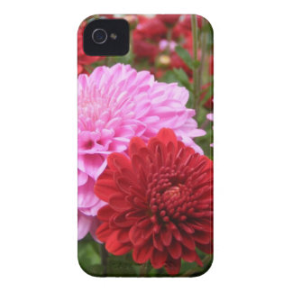 Family Gifts iPhone 4 Case