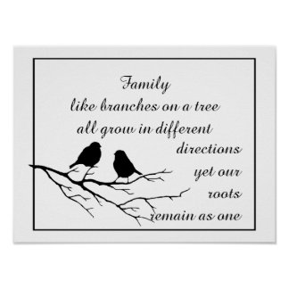 Family like branches on a tree Saying with Birds Poster