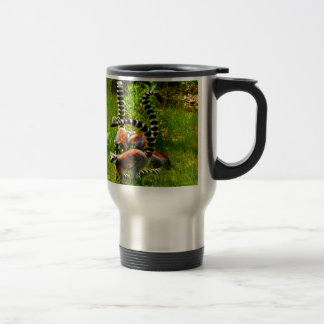 Family love joy  ring tailed lemur prosimians mugs