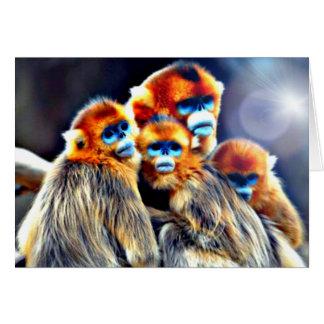 Family monkey wisdom/greeting card