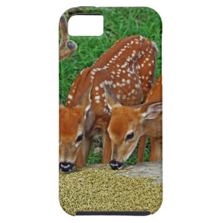 Family Night Out iPhone 5 Cases