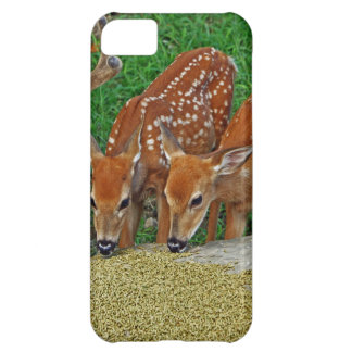 Family Night Out Case For iPhone 5C