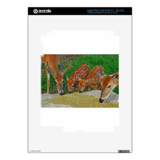 Family Night Out iPad 3 Skin