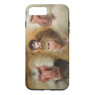Family of Baboons Papio Hamadryas Cologne Zoo iPhone 8 Plus/7 Plus Case